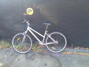 southern cross mountain bike