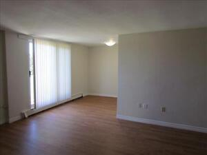 2 Bedroom Apartment for Rent MINUTES TO DOWNTOWN! Kitchener / Waterloo Kitchener Area image 1
