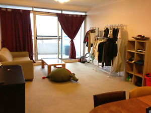 Chatswood shareroom for rent Chatswood Willoughby Area Preview