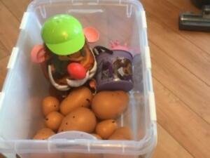Mr Potato Head Parts, Storage Container and lopsie lolly doll Stratford Kitchener Area image 1