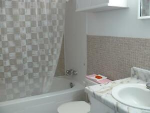 2 BEDROOM APT- AVAILABLE - $250 VISA CARD AWARDED AFTER MOVE IN Kitchener / Waterloo Kitchener Area image 2