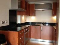 Great large Room in 2 Bed Apartment to Let