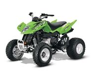 2014 Arctic Cat DVX 300