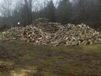 Firewood / Cedar Kindling / Saplings / Saw Logs / Rough Lumber