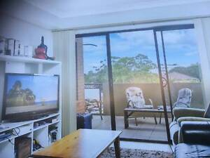 Female preferred for room in great apartment Homebush Strathfield Area Preview