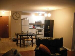 Spacious 2 Bedroom Apt w/Large Balcony Available Immediately