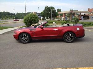 2010 Ford Mustang Cuir Cabriolet