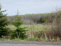 4 acres overlooking tidal Waugh River valley