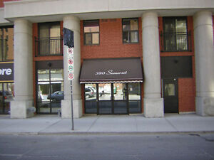 1 bed apt available March 1/ 380 Somerset St West