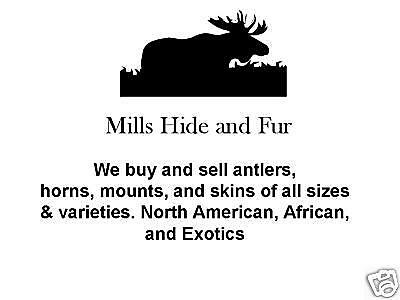 MILLS HIDE and FUR