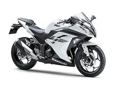 Picture of A 2017 KTM NINJA 300 300