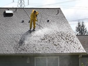 North Vancouver Window cleaning Pressure washing & gutters clean North Shore Greater Vancouver Area image 4