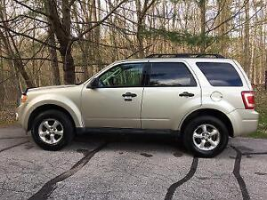 2011 Ford Escape- Leather