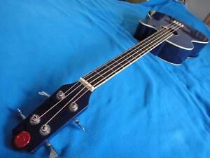 Electro Acoustic Bass Parkville Melbourne City Preview