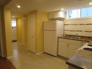 BRIGHT SPACIOUS FURNISHED ONE BEDROOM APARTMENT Kingston Kingston Area image 5