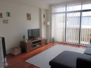 Share room in Central Chippendale Inner Sydney Preview