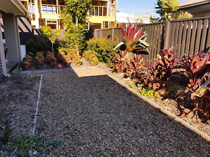 Landscaper required to grass our sideyard North Lakes Pine Rivers Area Preview