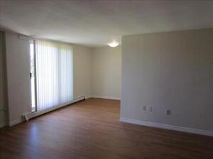 GREAT 1 Bedroom Apartment for Rent Minutes to Downtown! Kitchener / Waterloo Kitchener Area image 2