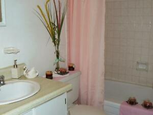 1 BR Available for rent in Stratford, ON Stratford Kitchener Area image 11