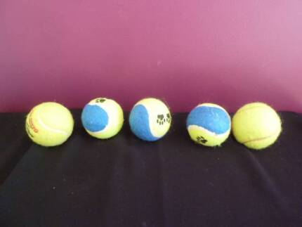 Balls for dog to play with  Please also see lots of other things