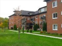 DON'T MISS OUT! Reno'd 1 Bedroom, UTIL and Basic Internet INCL!