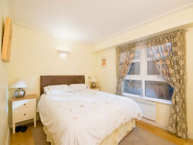 ONE BED FLAT TO LET, SPITALFIELDS E1. SHORT WALK TO CITY. FURNISHED. FASHIONABLE AREA. SECURE ENTRY