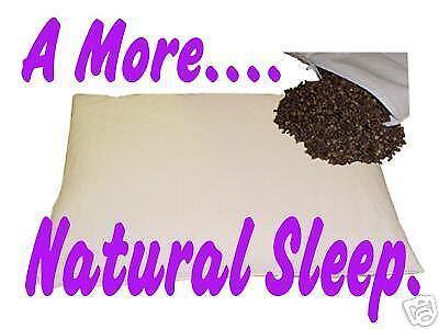 Buckwheat Pillow Ebay