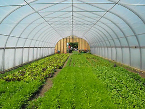 Looking for small agricultural start-up land