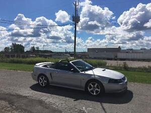 2000 Ford Mustang GT Supercharged Convertible