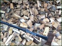 Seasoned firewood 2 bulk 1000 kg bags