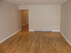 Large, Newly Renovated Apartment