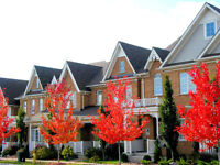 ORLEANS AFFORDABLE TownHomes $179,900 - $269,900