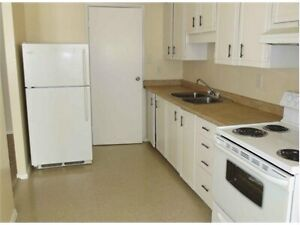 Room for rent for a day, week or two weeks  Kitchener / Waterloo Kitchener Area image 1