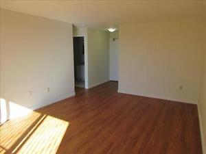 GREAT 1 Bedroom Apartment for Rent Minutes to Downtown! Kitchener / Waterloo Kitchener Area image 4