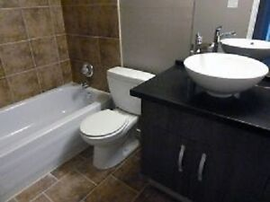 Newly renovated apartment! 2 month rent free!!