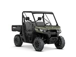 2019 Can-Am Defender DPS HD8 Green