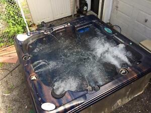 Spa hot tub Dynasty Reconditionné