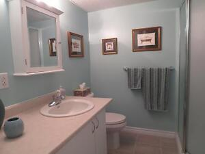 BRIGHT SPACIOUS FURNISHED ONE BEDROOM APARTMENT Kingston Kingston Area image 9