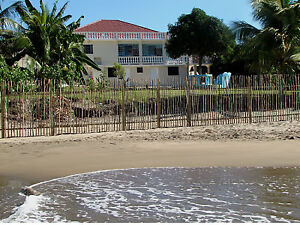 Jamaica Beach House - DOCs on the Bay
