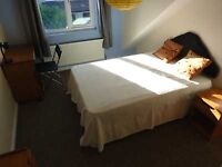 Chesterfield Rd, St Andrews -Double room- One mile to Bristol centre - near Glos Rd and Stokes Croft
