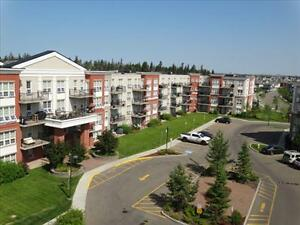 Great incentives &  2 Bedrooms start at $1245! Edmonton Edmonton Area image 17