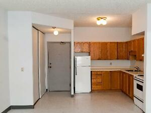 Clean and quiet one bedroom available for December Kitchener / Waterloo Kitchener Area image 7