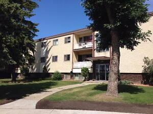Argyll Manor 1 Bedrm with Balcony $100 move-in discount!