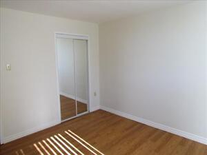 2 Bedroom Apartment for Rent MINUTES TO DOWNTOWN! Kitchener / Waterloo Kitchener Area image 4