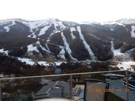 Ski Lodge Share Thredbo Silver Brumby