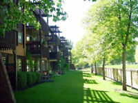 Great 1B Unit in Adult Building Beautiful Grounds Hays farm