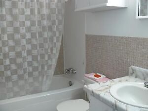 1 BR Apartment -AVAILABLE  IMMEDIATELY Kitchener / Waterloo Kitchener Area image 5