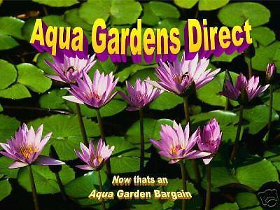 Aqua Gardens Direct