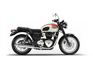 2019 Triumph Bonneville T100 England white/ intense orange