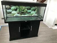 Juwel Rio Black 300 MarineTropicalCold Water Fish Tank Aquarium setup (delivery installation)
